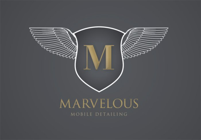 Marvelous Mobile Auto Detailing – Logo Design